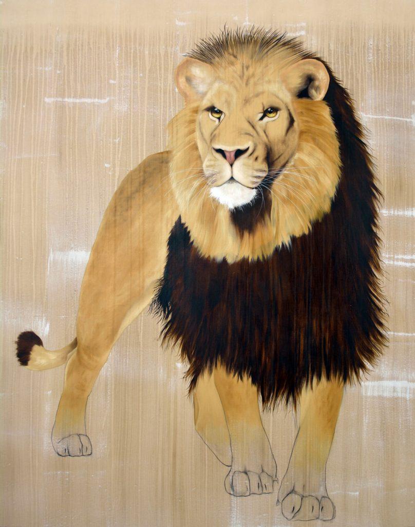 lion thierry bisch photographer clementine de forton gallery