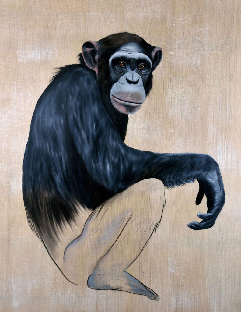 chimpanzee thierry bisch photographer clementine de forton gallery